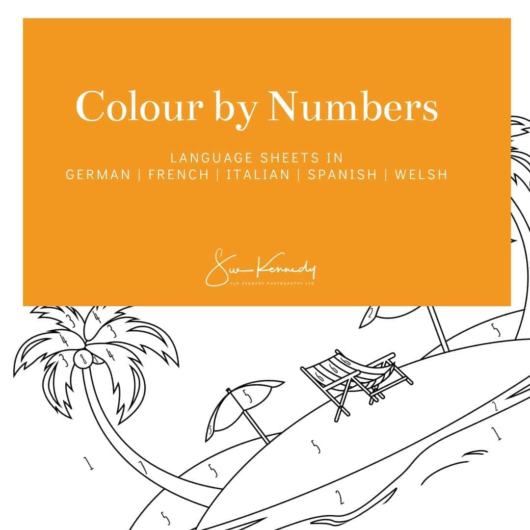 colour by number sheets
