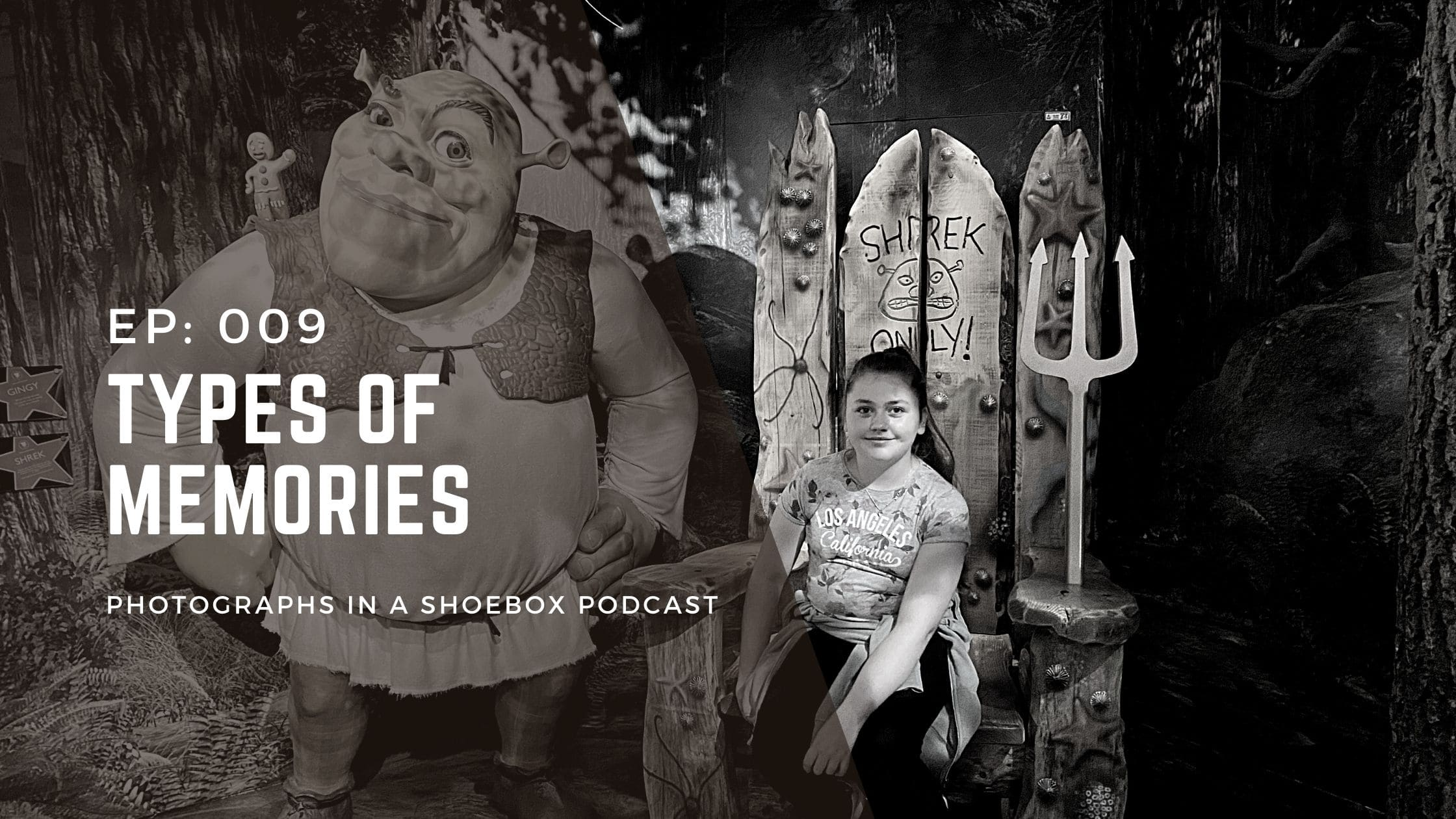 podcast title graphic for Types of memories: wax works